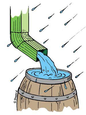 Water for elephants essay - newentgloucsschuk